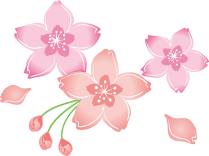 bloom_11